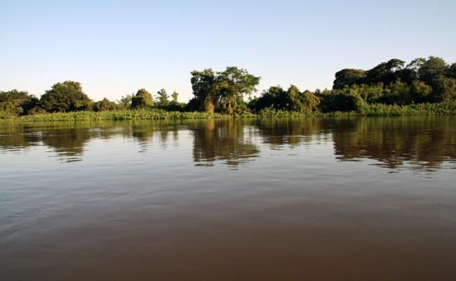 pantanal2-by-vicki__shane