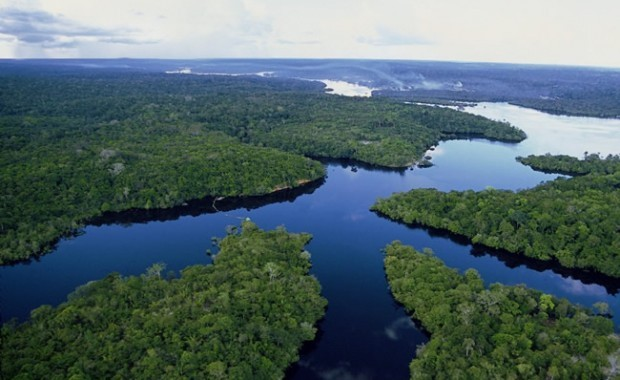 manaus-amazon-brazil-eco-park-view[1]