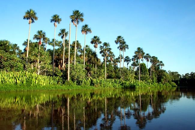 Caiman Hotel in Pantanal South - Marshlands