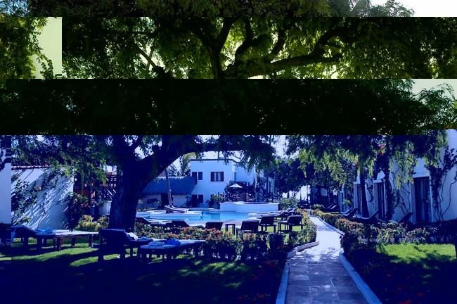 Mosquito Blue Hotel in Jericoacoara - Garden